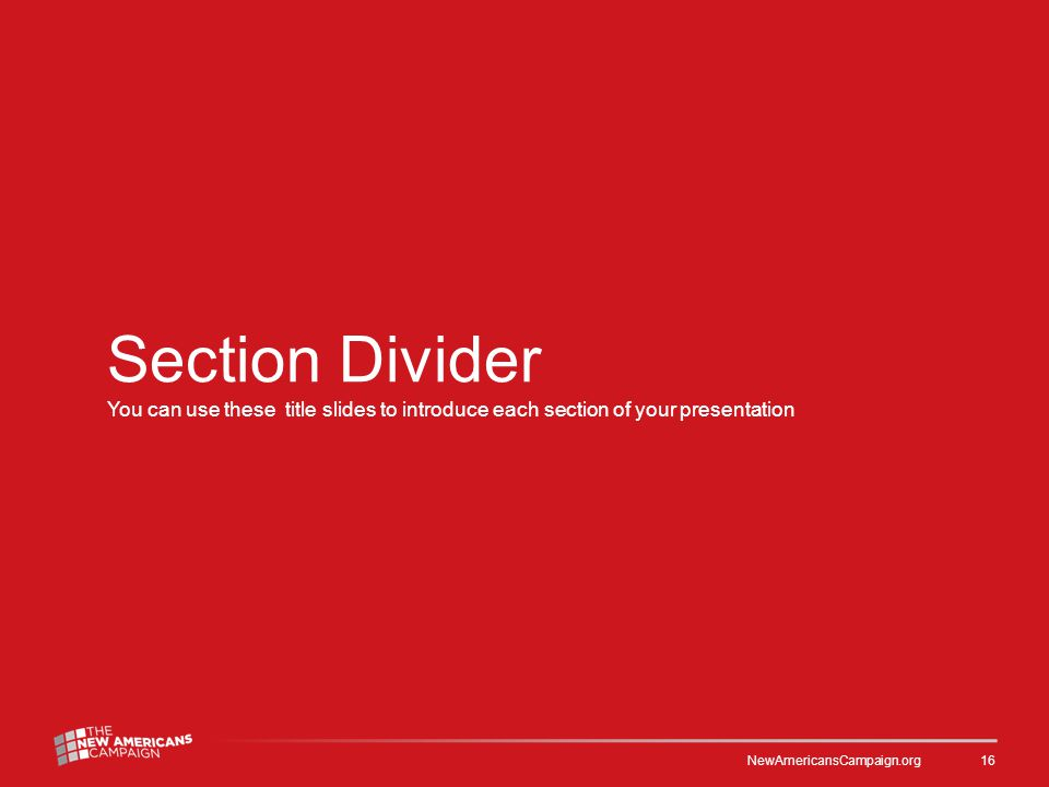 Section Divider You can use these title slides to introduce each section of your presentation NewAmericansCampaign.org 16
