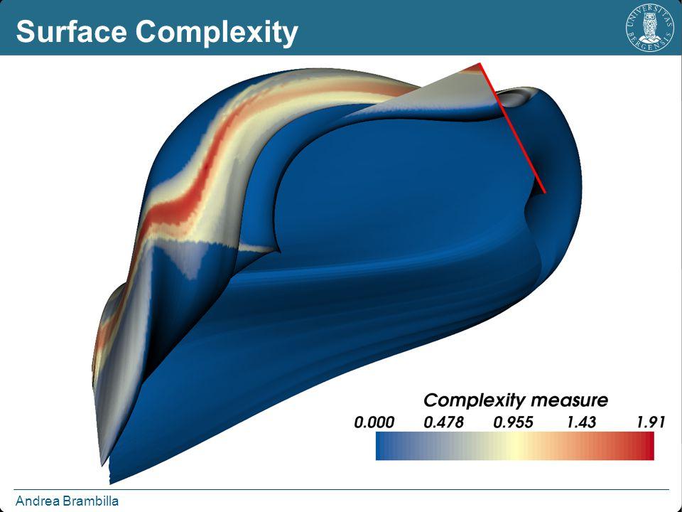 Andrea Brambilla Surface Complexity