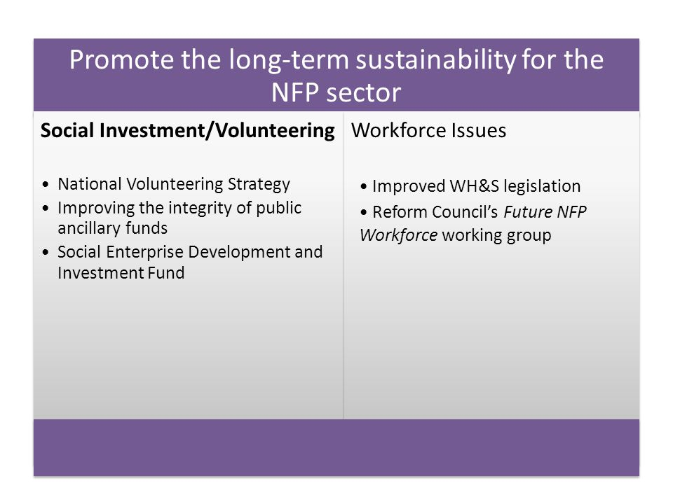 Promote the long-term sustainability for the NFP sector Social Investment/Volunteering National Volunteering Strategy Improving the integrity of publi