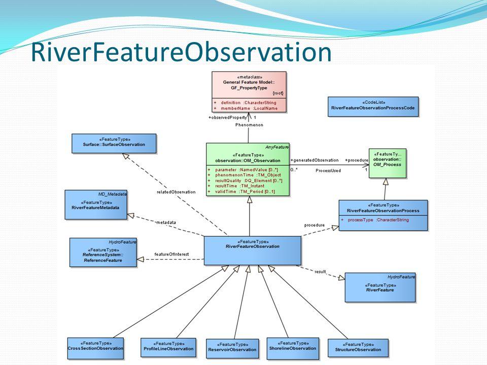 RiverFeatureObservation