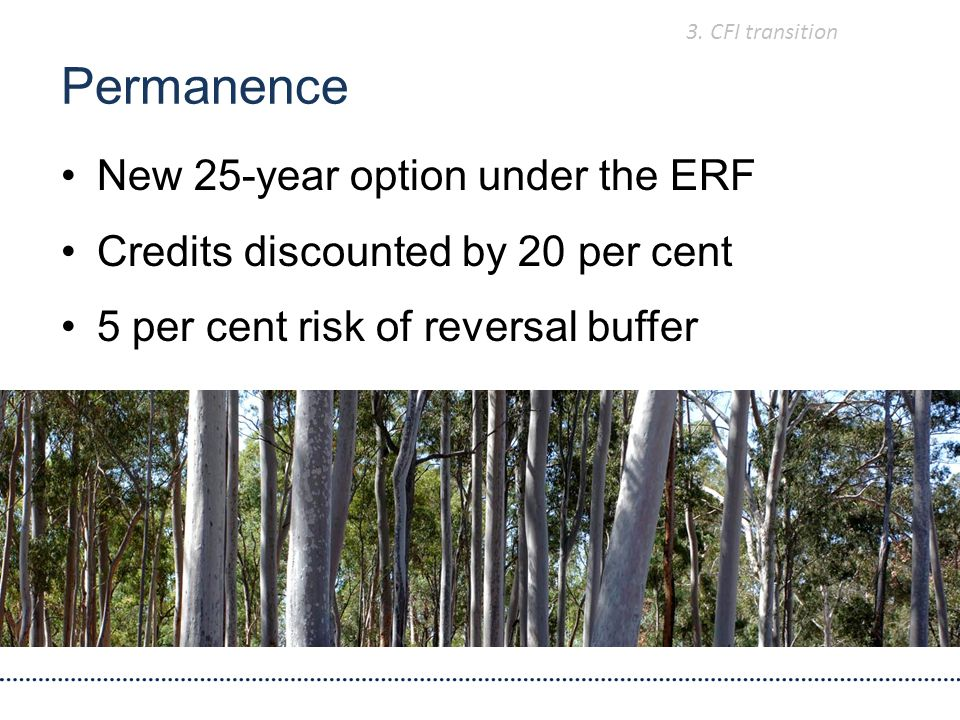 New 25-year option under the ERF Credits discounted by 20 per cent 5 per cent risk of reversal buffer Permanence 3.