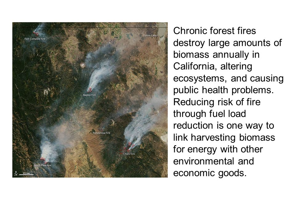 Chronic forest fires destroy large amounts of biomass annually in California, altering ecosystems, and causing public health problems. Reducing risk o