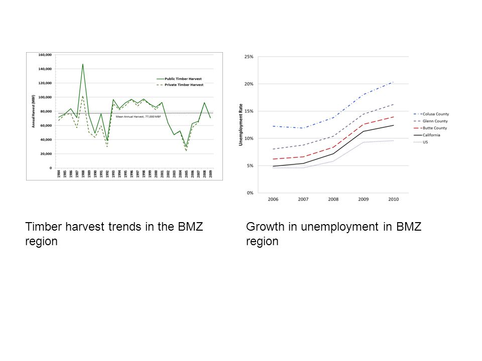Growth in unemployment in BMZ region Timber harvest trends in the BMZ region