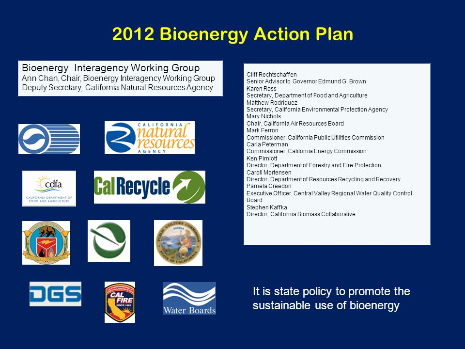 2012 Bioenergy Action Plan Bioenergy Interagency Working Group Ann Chan, Chair, Bioenergy Interagency Working Group Deputy Secretary, California Natur