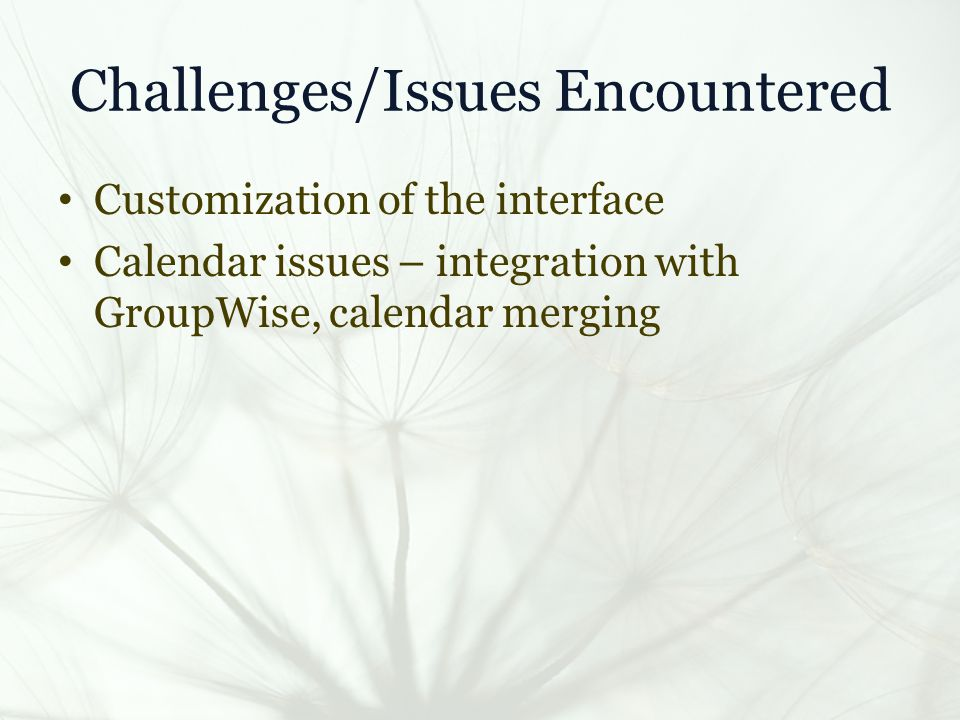 Challenges/Issues Encountered Customization of the interface Calendar issues – integration with GroupWise, calendar merging