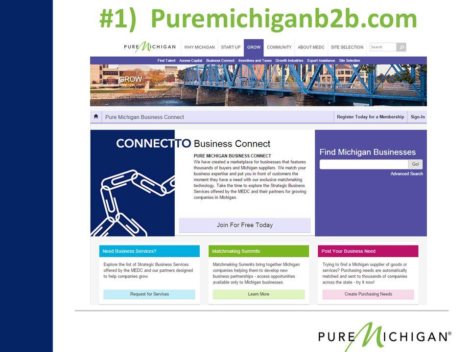 #1) Puremichiganb2b.com