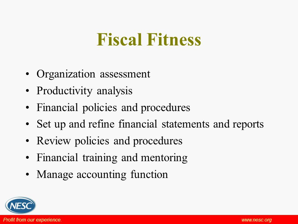 Profit from our experience.www.nesc.org Fiscal Fitness Organization assessment Productivity analysis Financial policies and procedures Set up and refine financial statements and reports Review policies and procedures Financial training and mentoring Manage accounting function