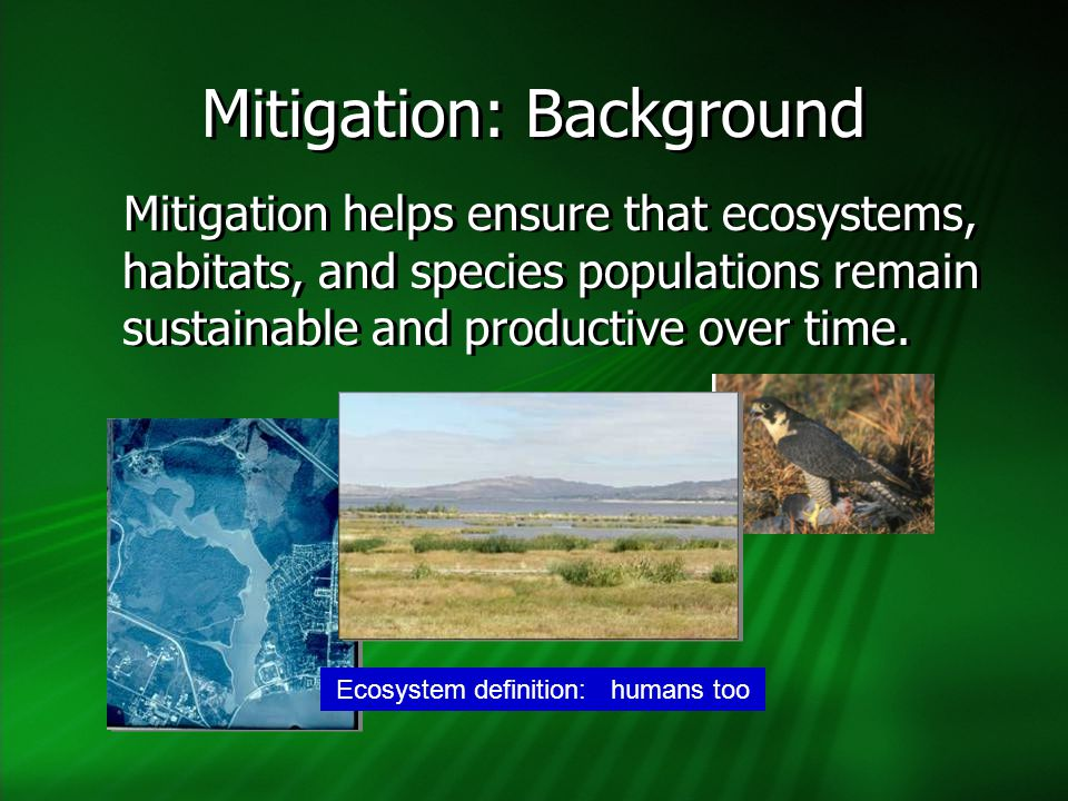 Mitigation: Background Mitigation helps ensure that ecosystems, habitats, and species populations remain sustainable and productive over time. Ecosyst