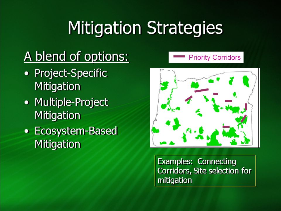 Mitigation Strategies A blend of options: Project-Specific Mitigation Multiple-Project Mitigation Ecosystem-Based Mitigation A blend of options: Proje