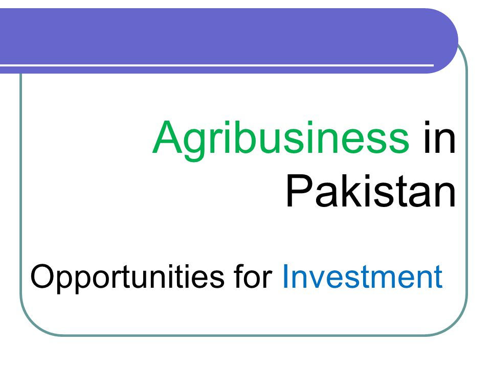 Way Forward for Agribusiness in Pakistan Awareness Programs Capacity Building Programs Packing House Grading Units Cold Storage Facilities Value Addition + Value Creation + Services Availability of Zero Rated Agro Processing Equipments