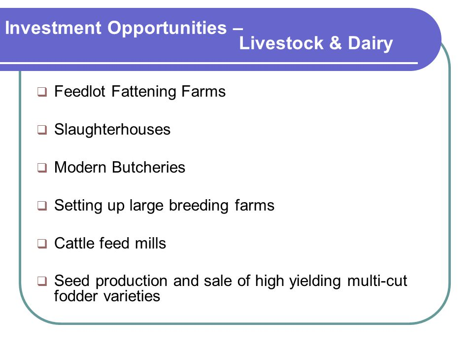 Investment Opportunities – Livestock & Dairy  Feedlot Fattening Farms  Slaughterhouses  Modern Butcheries  Setting up large breeding farms  Cattle feed mills  Seed production and sale of high yielding multi-cut fodder varieties