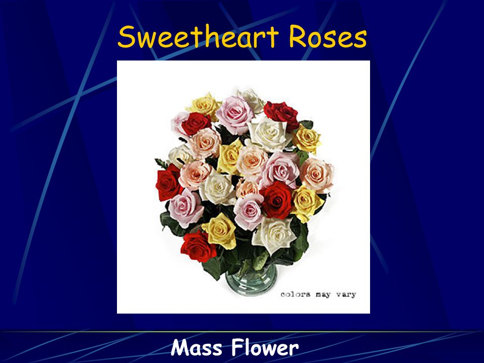 Sweetheart Roses Mass Flower