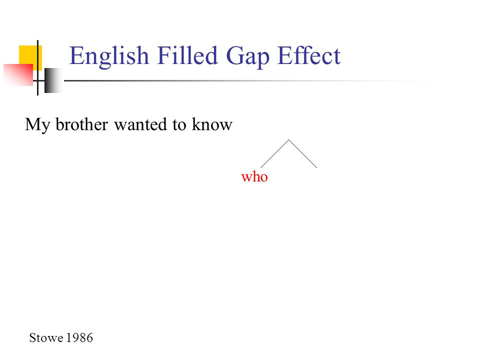 English Filled Gap Effect who My brother wanted to know Stowe 1986
