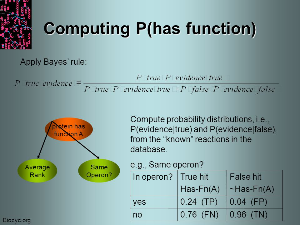 Biocyc.org Computing P(has function) Apply Bayes' rule: protein has function A Average Rank Same Operon.
