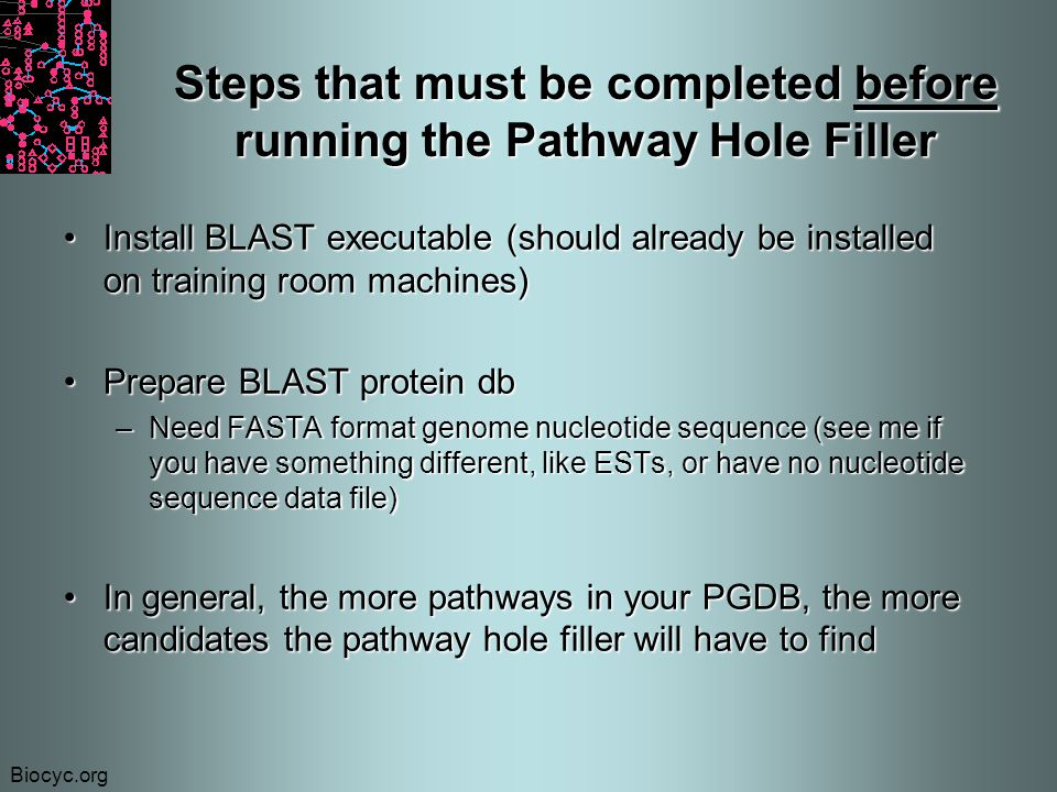 Biocyc.org Steps that must be completed before running the Pathway Hole Filler Install BLAST executable (should already be installed on training room machines)Install BLAST executable (should already be installed on training room machines) Prepare BLAST protein dbPrepare BLAST protein db –Need FASTA format genome nucleotide sequence (see me if you have something different, like ESTs, or have no nucleotide sequence data file) In general, the more pathways in your PGDB, the more candidates the pathway hole filler will have to findIn general, the more pathways in your PGDB, the more candidates the pathway hole filler will have to find