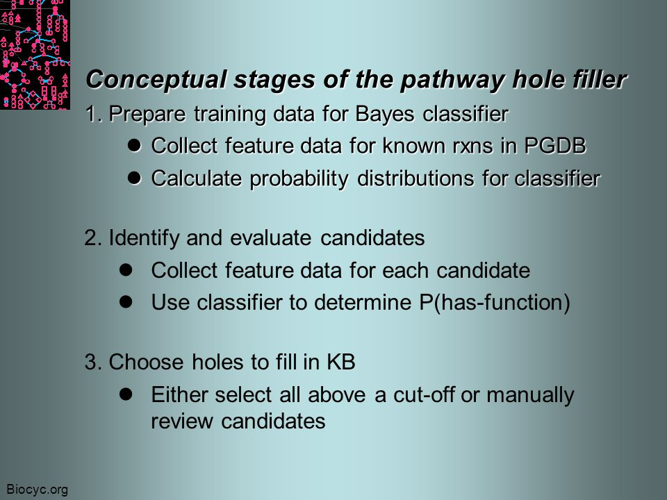 Biocyc.org Conceptual stages of the pathway hole filler 1.