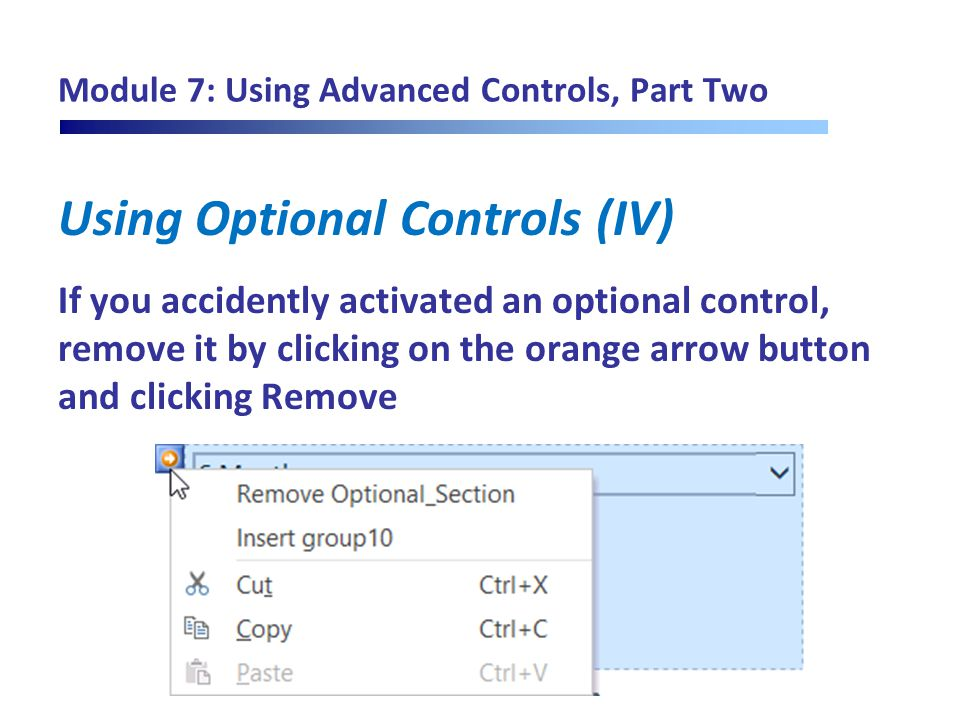 Module 7: Using Advanced Controls, Part Two Using Optional Controls (IV) If you accidently activated an optional control, remove it by clicking on the