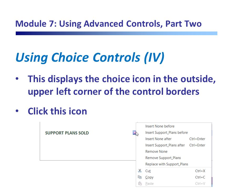 Module 7: Using Advanced Controls, Part Two Using Choice Controls (IV) This displays the choice icon in the outside, upper left corner of the control