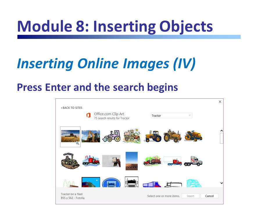 Module 8: Inserting Objects Inserting Online Images (IV) Press Enter and the search begins