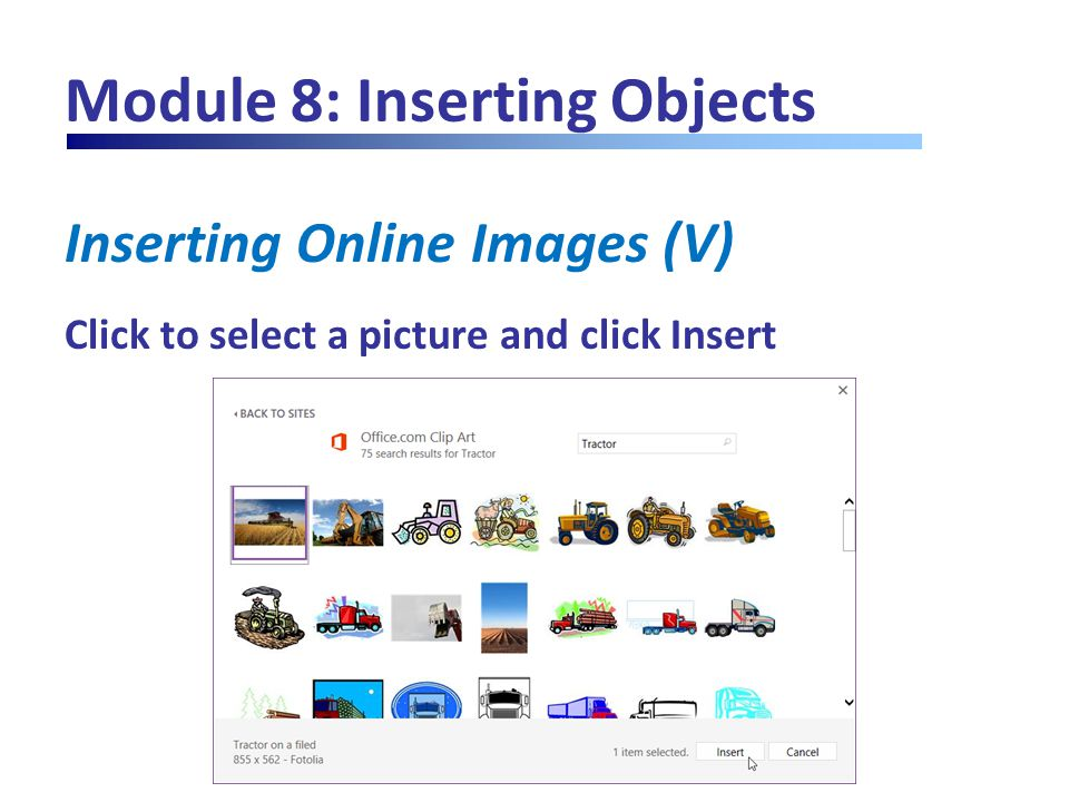 Module 8: Inserting Objects Inserting Online Images (V) Click to select a picture and click Insert