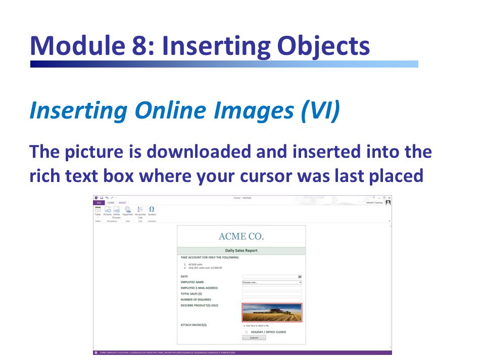 Module 8: Inserting Objects Inserting Online Images (VI) The picture is downloaded and inserted into the rich text box where your cursor was last plac