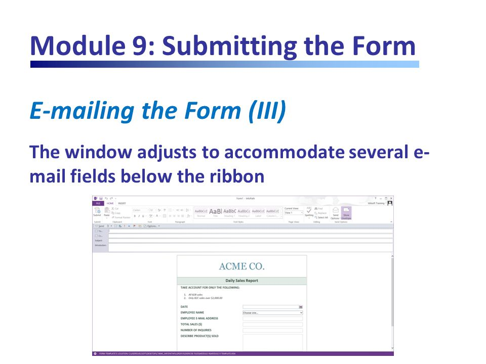 Module 9: Submitting the Form E-mailing the Form (III) The window adjusts to accommodate several e- mail fields below the ribbon