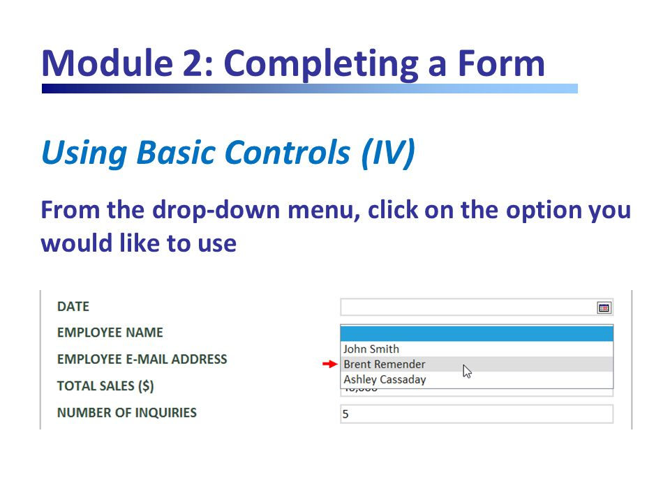Module 2: Completing a Form Using Basic Controls (IV) From the drop-down menu, click on the option you would like to use