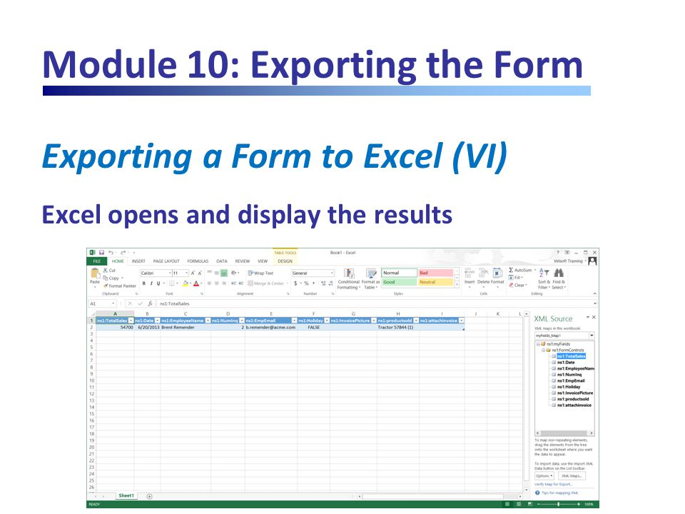 Module 10: Exporting the Form Exporting a Form to Excel (VI) Excel opens and display the results