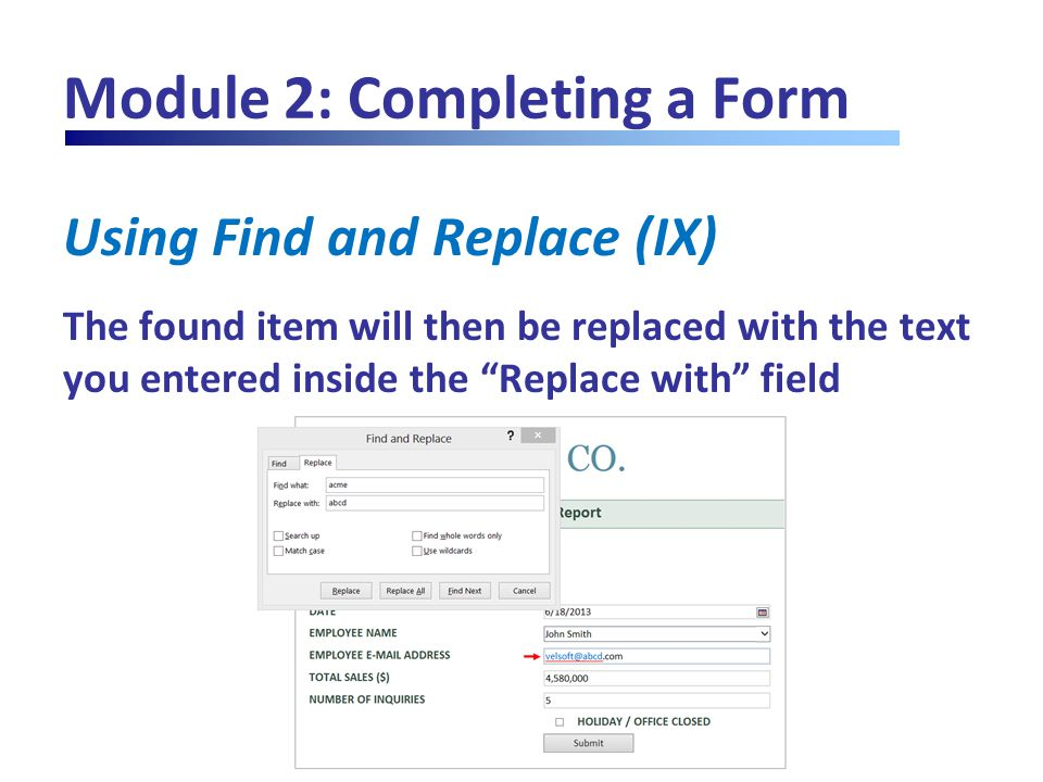 "Module 2: Completing a Form Using Find and Replace (IX) The found item will then be replaced with the text you entered inside the ""Replace with"" field"