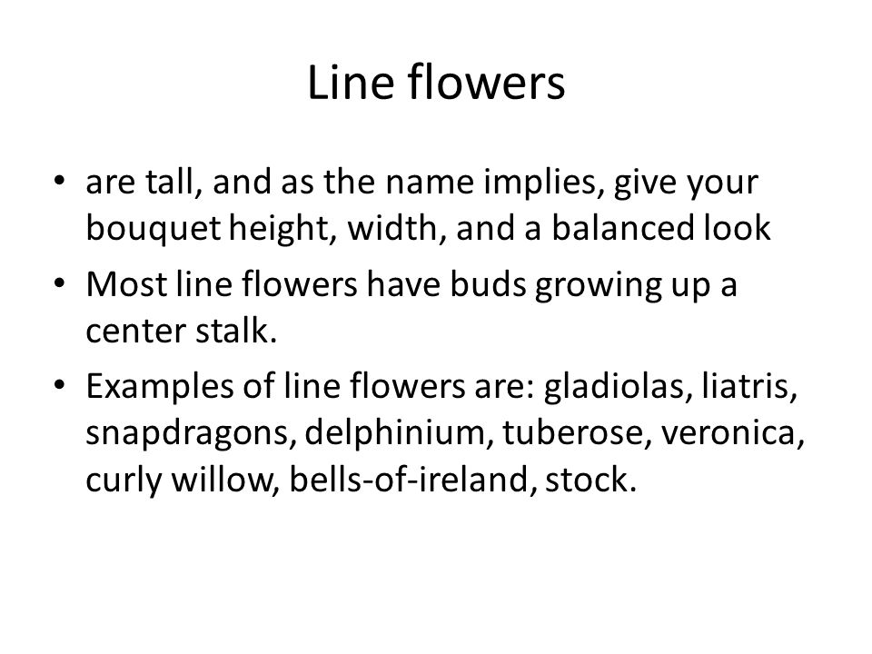 Line flowers are tall, and as the name implies, give your bouquet height, width, and a balanced look Most line flowers have buds growing up a center stalk.