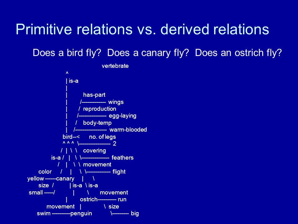 Primitive relations vs. derived relations Does a bird fly.