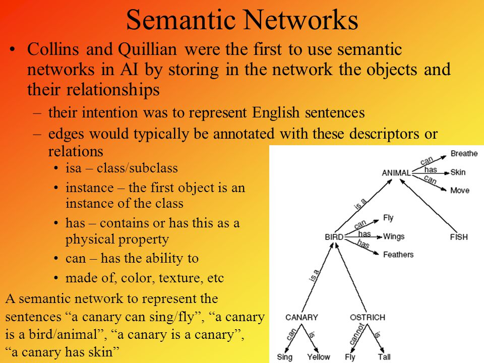 Semantic Networks Collins and Quillian were the first to use semantic networks in AI by storing in the network the objects and their relationships –th