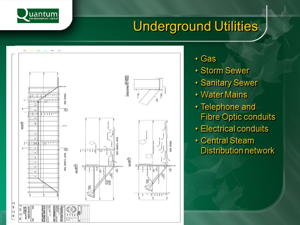 Underground Utilities Gas Storm Sewer Sanitary Sewer Water Mains Telephone and Fibre Optic conduits Electrical conduits Central Steam Distribution net