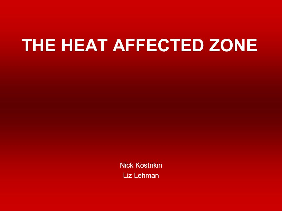 THE HEAT AFFECTED ZONE Nick Kostrikin Liz Lehman