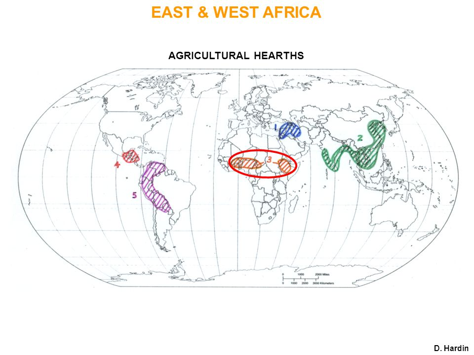 AGRICULTURAL HEARTHS D. Hardin EAST & WEST AFRICA