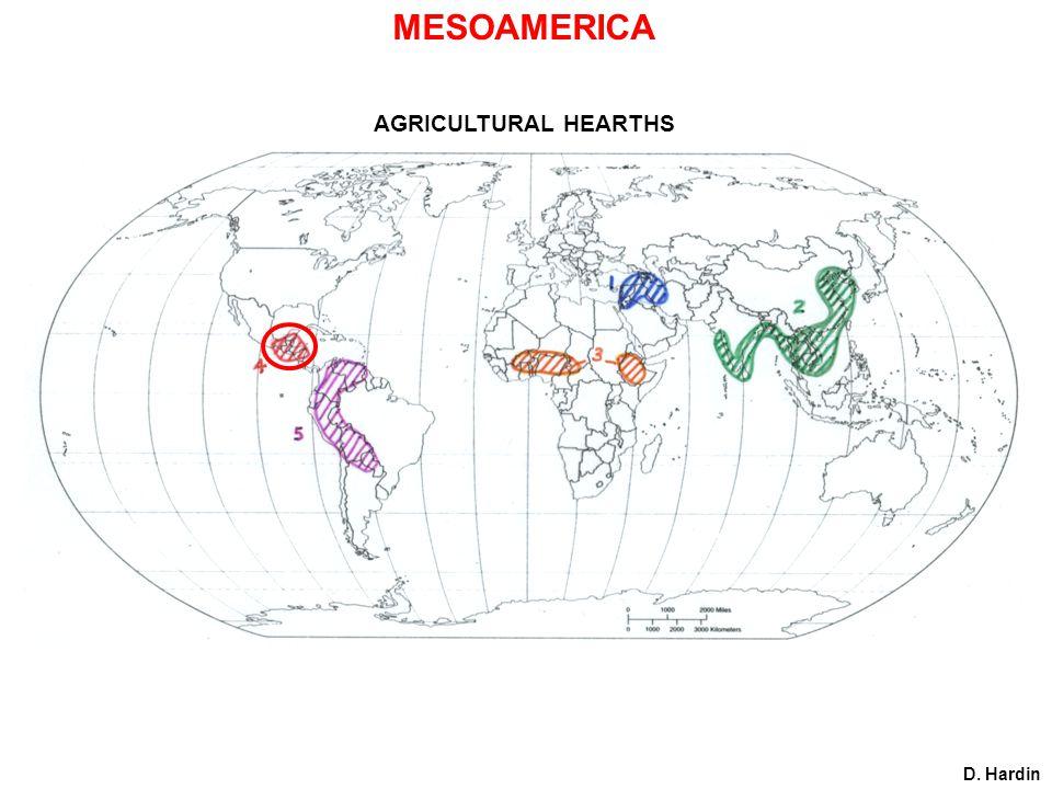AGRICULTURAL HEARTHS D. Hardin MESOAMERICA