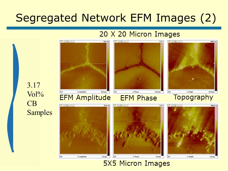 Segregated Network EFM Images (2) Topography EFM Amplitude EFM Phase 20 X 20 Micron Images 5X5 Micron Images 3.17 Vol% CB Samples