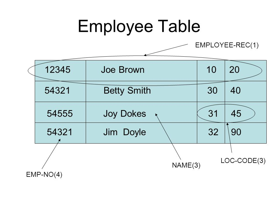 Employee Table 12345 Joe Brown 10 20 54321 Betty Smith 30 40 54555 Joy Dokes 31 45 54321 Jim Doyle 32 90 EMP-NO(4) NAME(3) EMPLOYEE-REC(1) LOC-CODE(3)