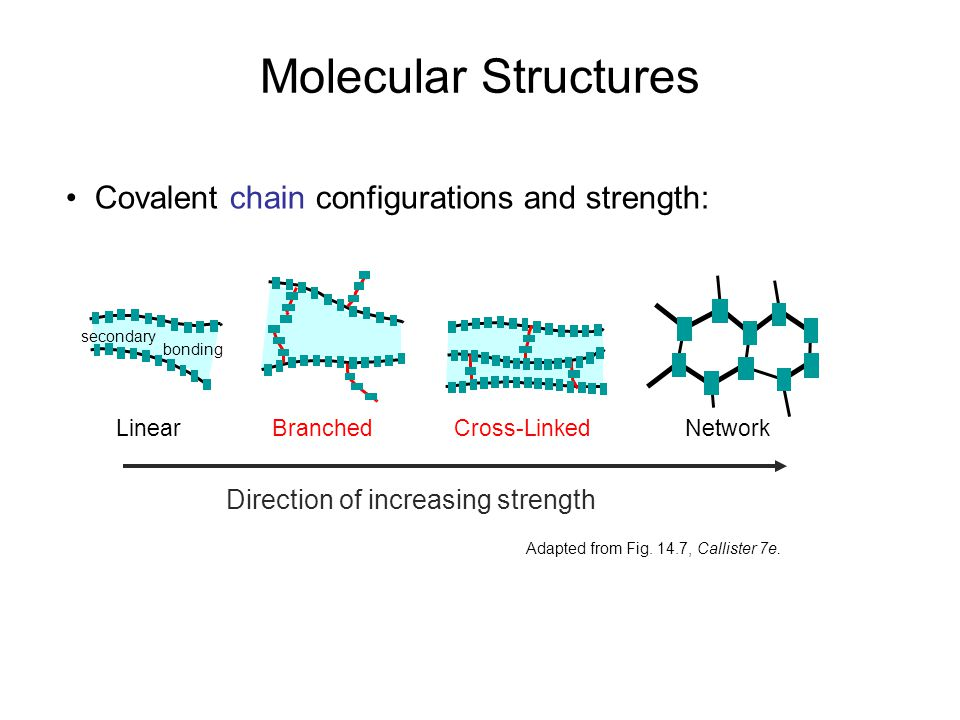 Covalent chain configurations and strength: Direction of increasing strength Adapted from Fig. 14.7, Callister 7e. Molecular Structures BranchedCross-