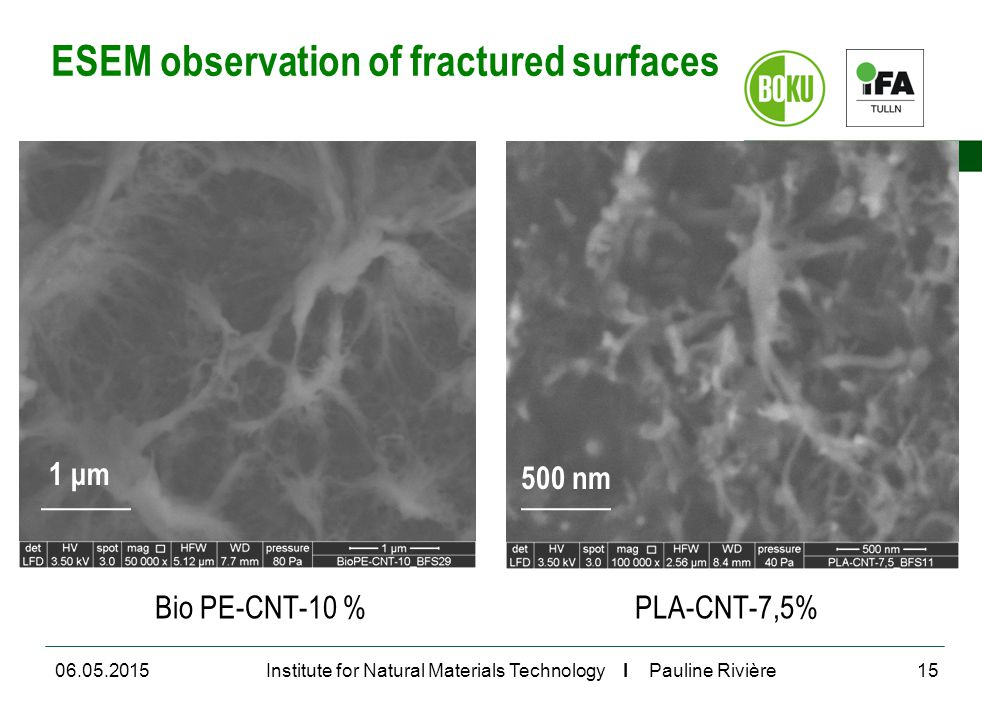 University of Natural Resources and Life Sciences, Vienna Department for Agrobiotechnology Institute for Natural Materials Technology I Pauline Rivière ESEM observation of fractured surfaces Bio PE-CNT-10 %PLA-CNT-7,5% 06.05.201515 500 nm 1 μm