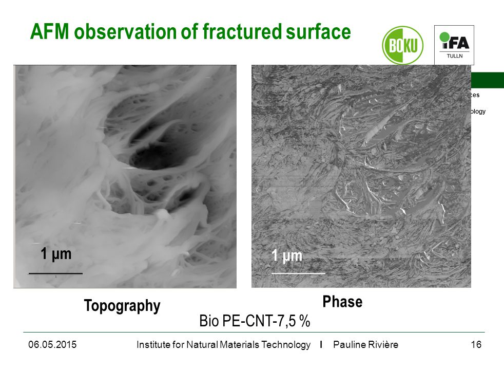 University of Natural Resources and Life Sciences, Vienna Department for Agrobiotechnology Institute for Natural Materials Technology I Pauline Rivière AFM observation of fractured surface 06.05.201516 Bio PE-CNT-7,5 % Topography Phase 1 μm