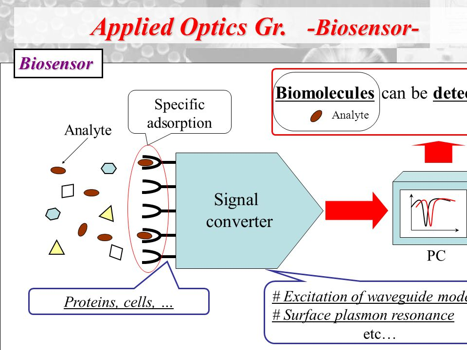 Biomolecules can be detected.