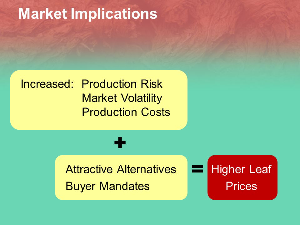 Market Implications Attractive Alternatives Buyer Mandates Higher Leaf Prices Increased: Production Risk Market Volatility Production Costs