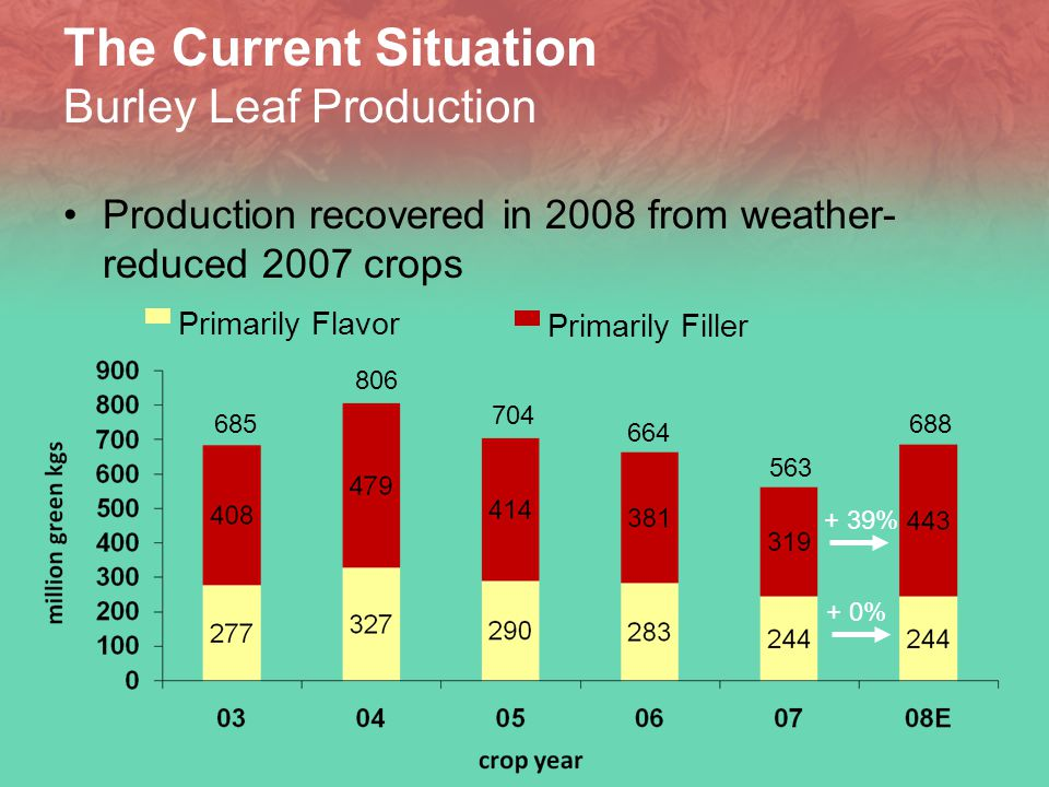 The Current Situation Burley Leaf Production Production recovered in 2008 from weather- reduced 2007 crops 685 806 704 664 563 Primarily Flavor Primarily Filler + 39% + 0% 688