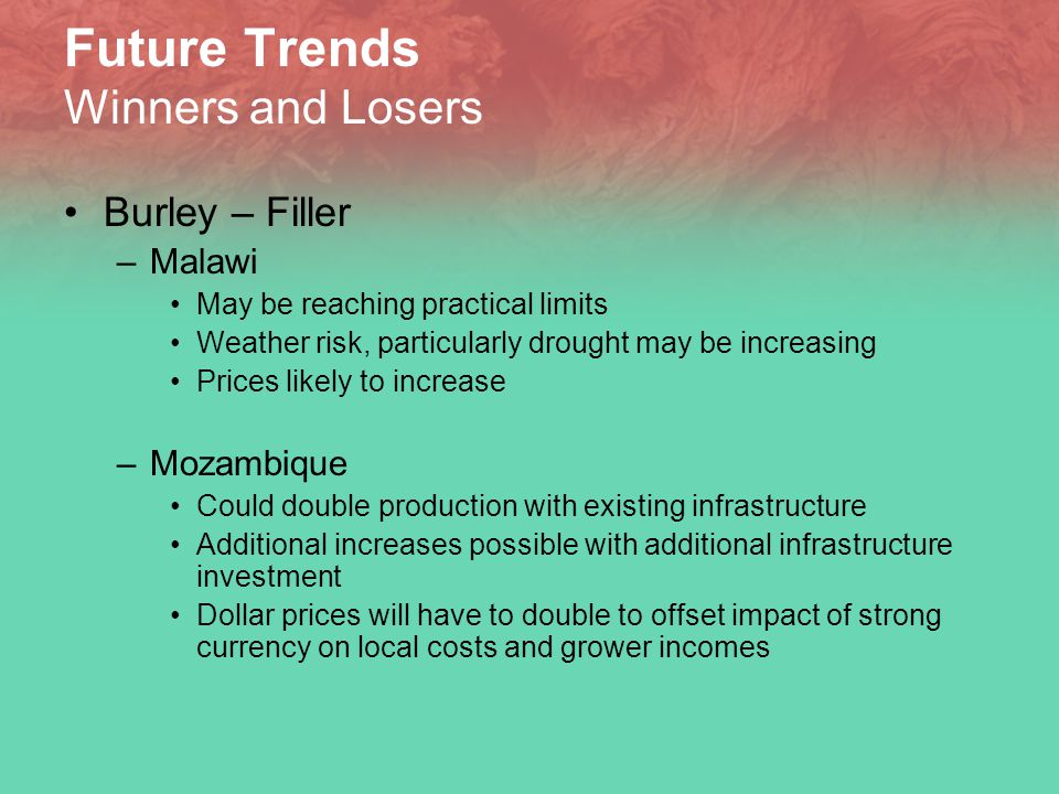 Future Trends Winners and Losers Burley – Filler –Malawi May be reaching practical limits Weather risk, particularly drought may be increasing Prices likely to increase –Mozambique Could double production with existing infrastructure Additional increases possible with additional infrastructure investment Dollar prices will have to double to offset impact of strong currency on local costs and grower incomes