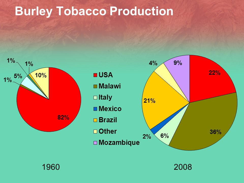 Burley Tobacco Production 19602008