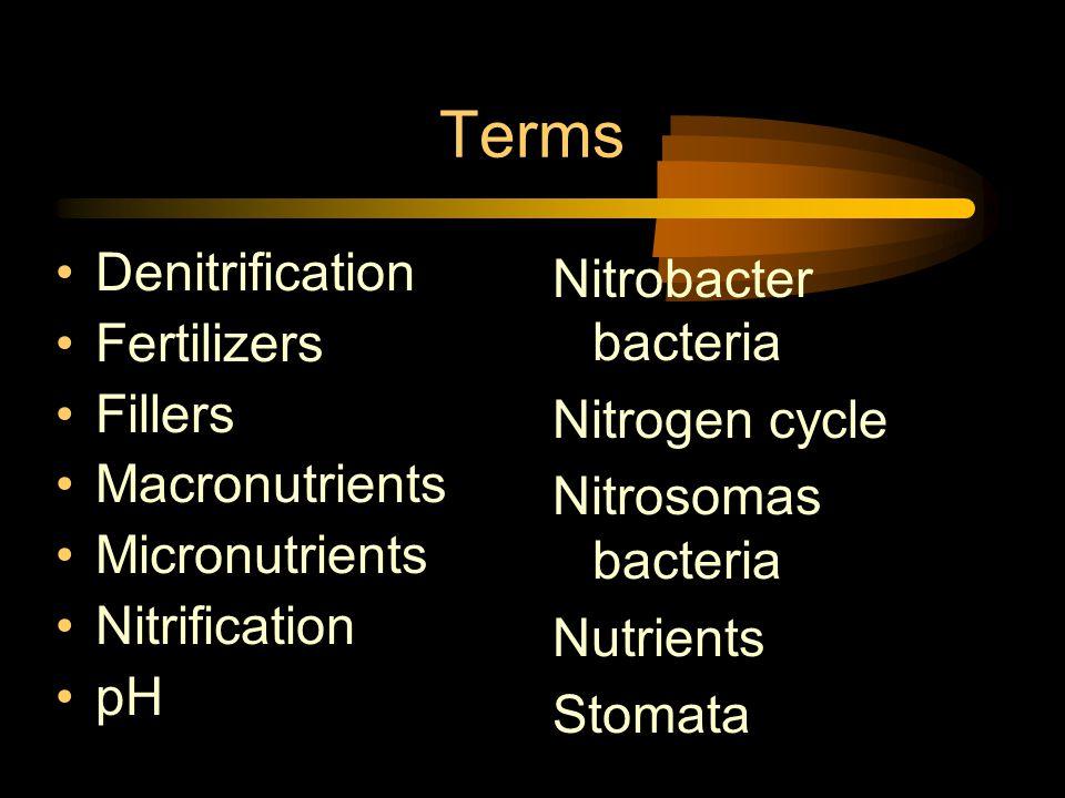 Terms Denitrification Fertilizers Fillers Macronutrients Micronutrients Nitrification pH Nitrobacter bacteria Nitrogen cycle Nitrosomas bacteria Nutrients Stomata