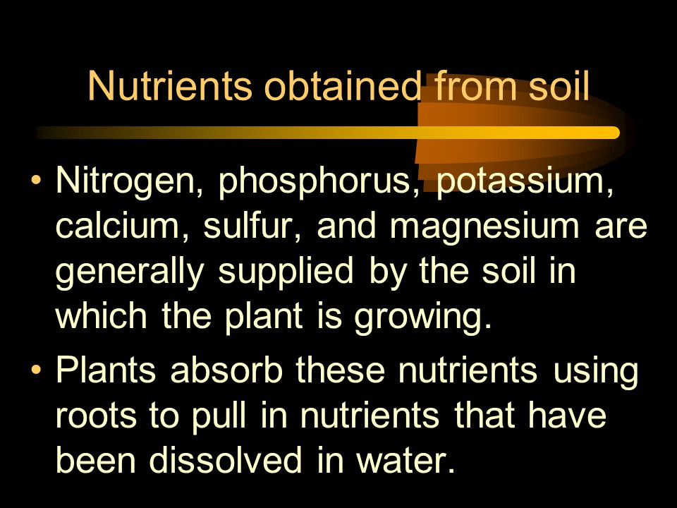 Nutrients obtained from soil Nitrogen, phosphorus, potassium, calcium, sulfur, and magnesium are generally supplied by the soil in which the plant is growing.
