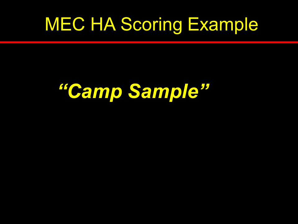 MEC HA Scoring Example Camp Sample