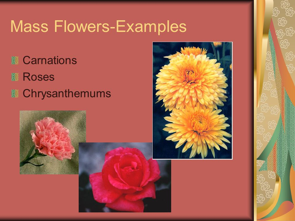 Form Flowers Unique in shape or color Create the accent or focal point or focal area of the arrangement to attract the viewer's attention